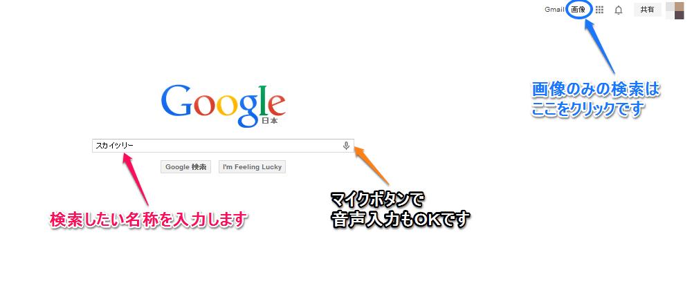 Google画像検索2