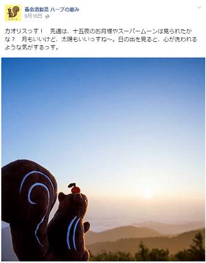 FireShot Screen Capture #048 - '養命酒製造 ハーブの恵み' - www_facebook_com_herb_megumi
